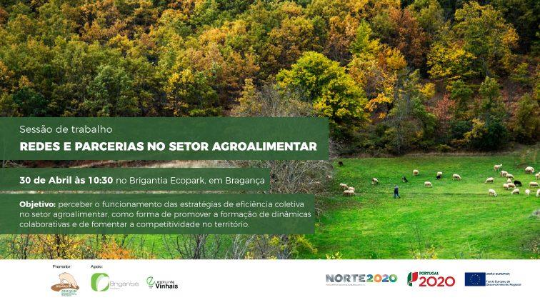 Redes e parcerias no setor agroalimentar