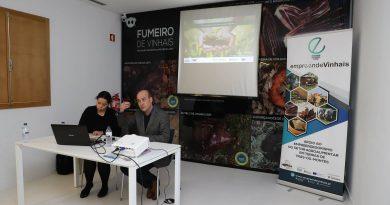 Novos Negócios no Sector Agro-Alimentar